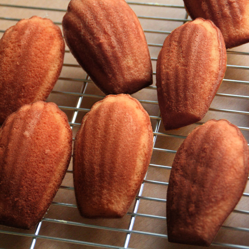 Coffee Flour Madeleines Recipe
